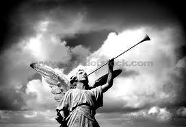 Angel-trumpet